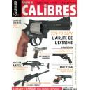 Guns & Calibre n°2